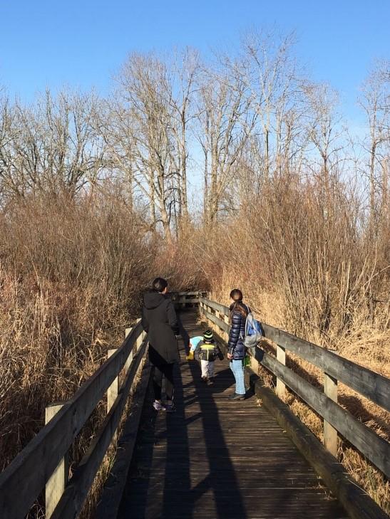Marymoor Park Audobon Trail